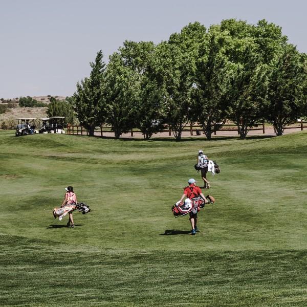 Full sets for kids 1 - Full Sets of Golf Clubs