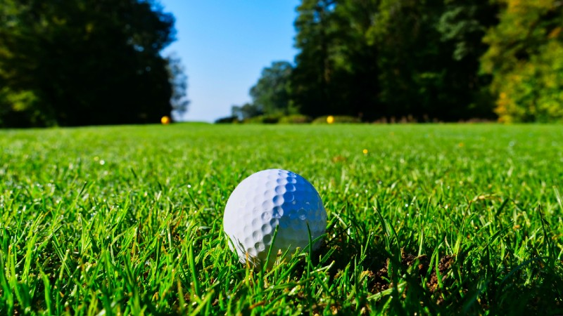 Fun facts about golf balls, 4000000 golf balls are lost every day.