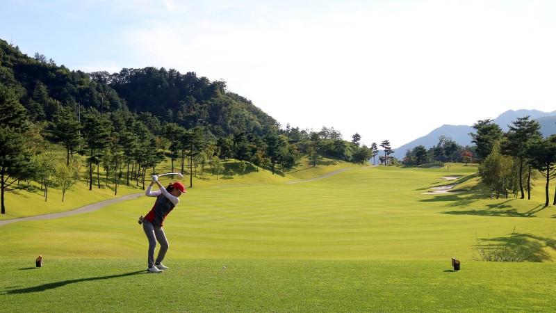 golf 3683338 1920 1 - Home